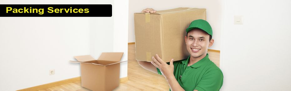 Packing Services - professional mover